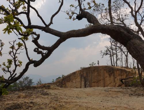 Pai – zurück in die Natur