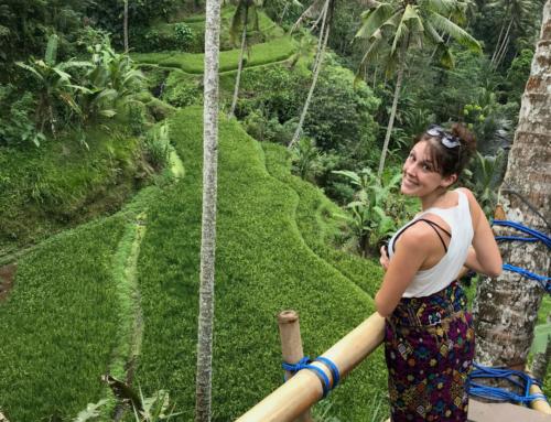 Bali Ubud – Luxus, Essen & Reisterrassen
